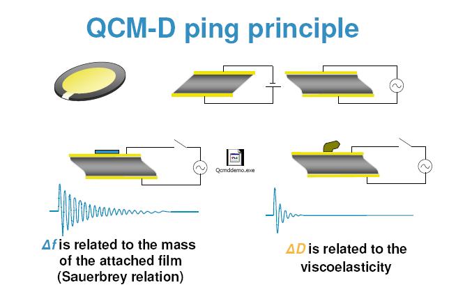 QCM-D principle